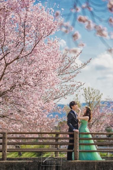 海外婚紗,自助婚紗,日本關西婚紗,櫻花婚紗,櫻花,婕詩精品婚紗,Jocelyn wedding